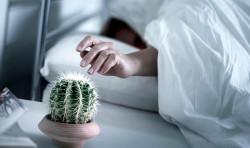 Как проснуться от зимней спячки?