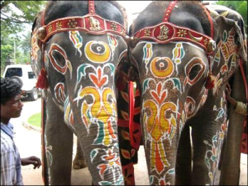 Туры в Индию – знакомство с традициями и обычаями Востока