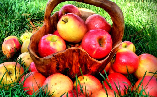 Ах, яблоки...