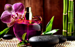 Правила использования парфюмерной продукции