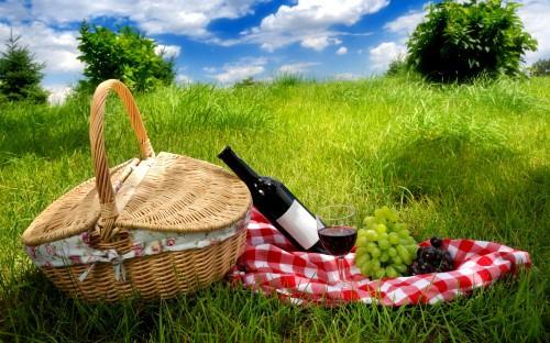 Что необходимо брать с собой на пикник?