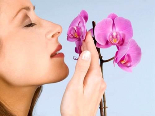 Влияние запахов на наше подсознание