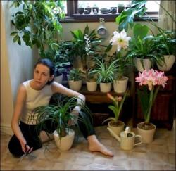 Как ухаживать за комнатными цветочками