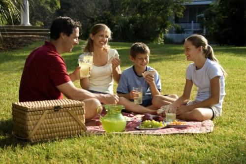 Правила идеального пикника