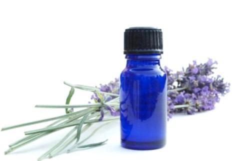 Лечебные свойства лавандового масла