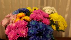 Какие цветы дарить женщинам?