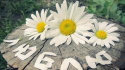 Что расскажут цветы о чувствах мужчины