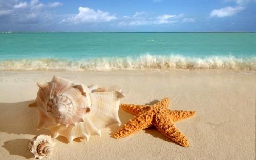 Отдых летом: морская идиллия