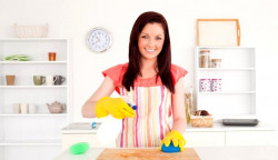 Флайледи - как навести порядок в доме не тратя много времени